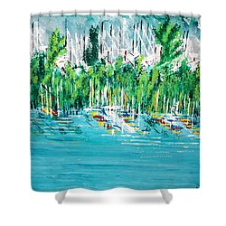 The Docks Shower Curtain by George Riney
