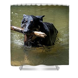 The Dog Days Of Summer Shower Curtain by Bill Cannon