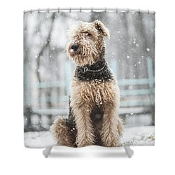 The Dog Under The Snowfall Shower Curtain