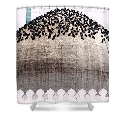 The Dome Of The Mosque Shower Curtain