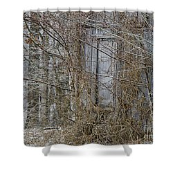 The Door To The Past Shower Curtain by Wilma  Birdwell