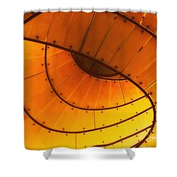 The Dragon Awakes Shower Curtain by Kelly Awad