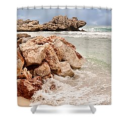 The Dragon Of Labadee Shower Curtain by Mitchell R Grosky