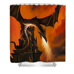 The Dragon's Tower Shower Curtain