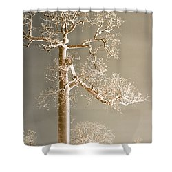 The Dreaming Tree Shower Curtain by Holly Kempe