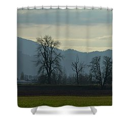 Shower Curtain featuring the photograph The Eagle Tree by Eti Reid