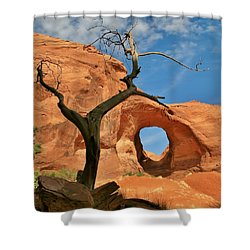 The Ear Of The Wind 2 Shower Curtain by Mo Barton