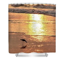 The Early Bird Shower Curtain
