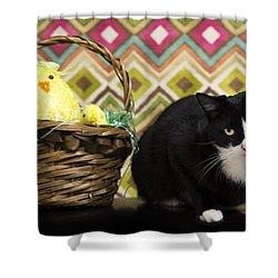The Easter Tiggy Shower Curtain by Nick Kirby