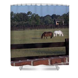 Shower Curtain featuring the photograph The Easy Life by John Glass