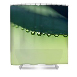 Shower Curtain featuring the photograph The Edge II by Priya Ghose