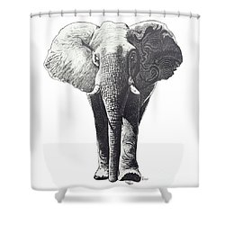 The Elephant Shower Curtain by Kean Butterfield