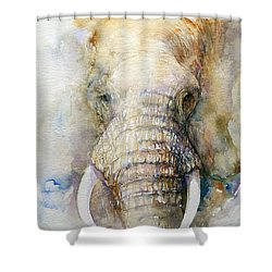 The Emperor Shower Curtain