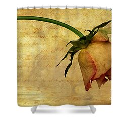 The End Of Love Shower Curtain by John Edwards