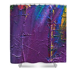 The End Stage Path Series Shower Curtain