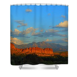 The Endangered West Shower Curtain