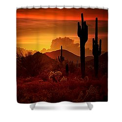 The Essence Of The Southwest Shower Curtain by Saija  Lehtonen