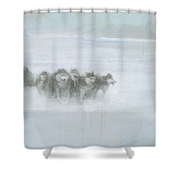 The Explorer Shower Curtain by Steve Mitchell