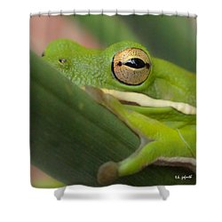 The Eye Has It Squared Shower Curtain by TK Goforth