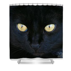The Eyes Have It Shower Curtain by Mariarosa Rockefeller