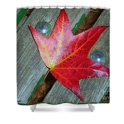 Shower Curtain featuring the photograph The Face Of Autumn by Leanne Seymour