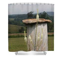 Fall Harvest Shower Curtain by Yvonne Wright