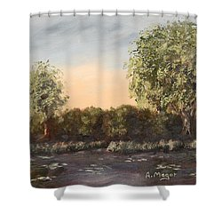 The Far End Of The Pond Shower Curtain