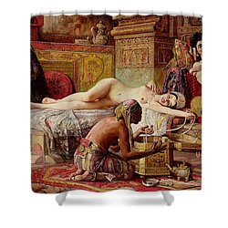 The Favorite Of The Harem Shower Curtain by Gyula Tornai