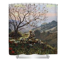 The Fig Tree   Mt Carmel Shower Curtain