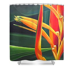 The Final Flame Shower Curtain