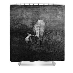 The First Hunt Shower Curtain by Ron Jones