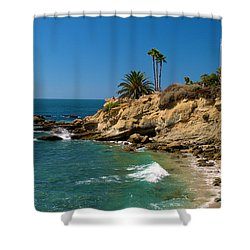 The Flag Shower Curtain by Richard J Cassato