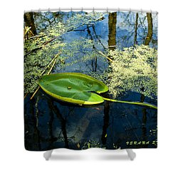 Shower Curtain featuring the photograph The Floating Leaf Of A Water Lily by Verana Stark