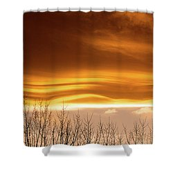The Flow Shower Curtain by Jim Garrison