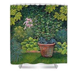 The Flower Pot Cat Shower Curtain by Ditz