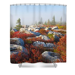 The Fog Clears At Dolly Sods Shower Curtain by Bill Swindaman
