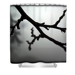The Foggiest Idea Shower Curtain by Brian Wallace