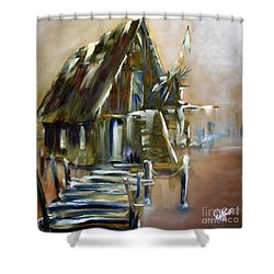 The Forgotten Shack Shower Curtain by David Kacey