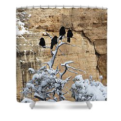 The Four Crows Shower Curtain by Laurel Powell