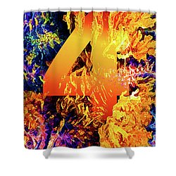 The Four Of Creation Shower Curtain by Chuck Mountain