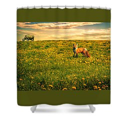 The Fox And The Cow Shower Curtain by Bob Orsillo