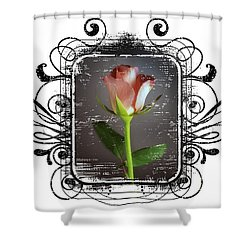 The Framed Rose Shower Curtain by Mauro Celotti