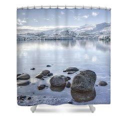 The Frozen World Shower Curtain by Evelina Kremsdorf