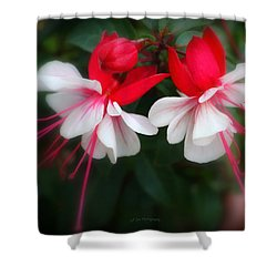 The Fuchsia Shower Curtain