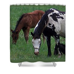Shower Curtain featuring the photograph The Future Generations by John Glass