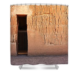 The Gate Shower Curtain by Joe Kozlowski