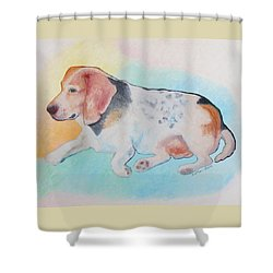 The Gentle Leader Shower Curtain