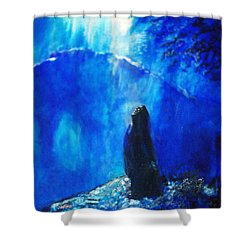The Gethsemane Prayer Shower Curtain