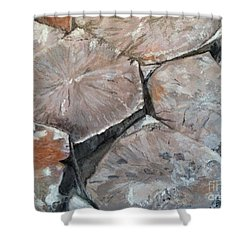 Shower Curtain featuring the painting The Giant's Causeway by Brenda Brown