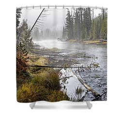 The Gibbon's Inviting Waters  Shower Curtain
